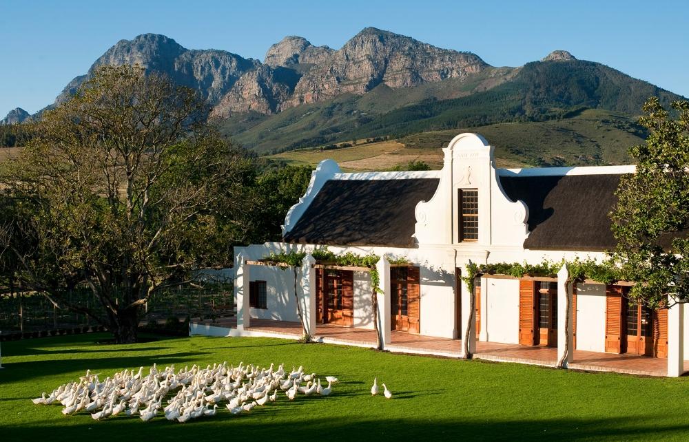 Africa do Sul - vinícolas