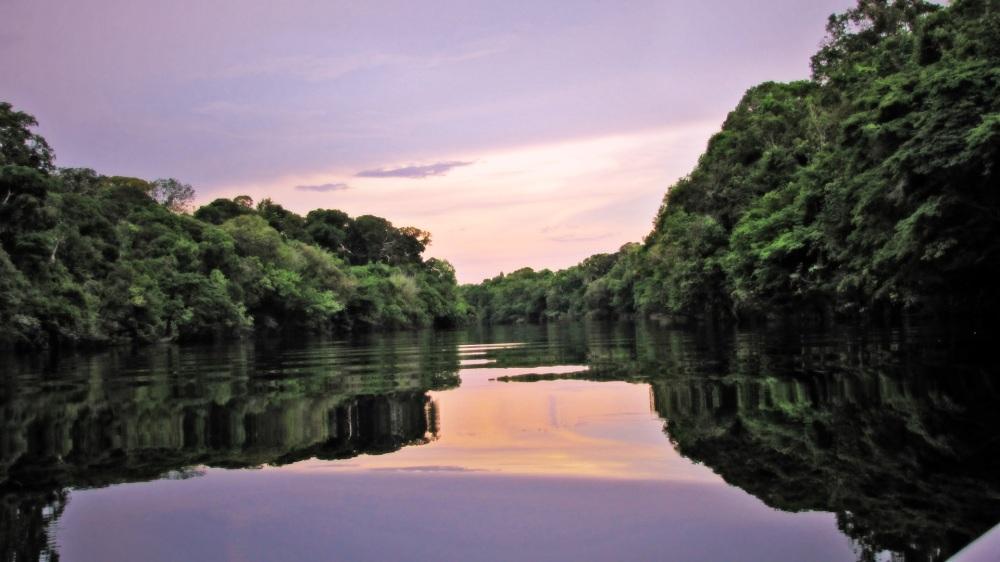 Amazônia - Rio Negro